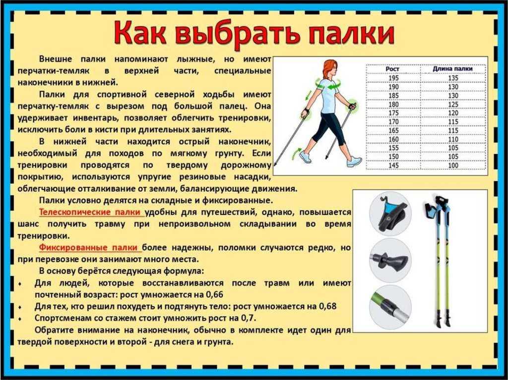 Как выбрать палки для скандинавской ходьбы - пошаговая инструкция