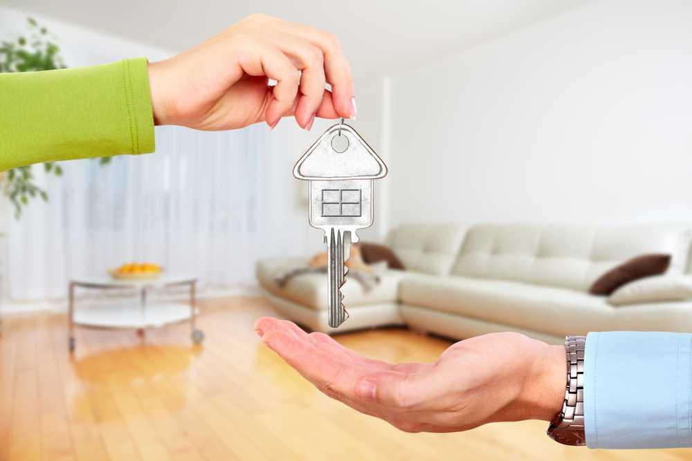 ? что выбрать купить дом или квартиру в 2020? где лучше жить?
