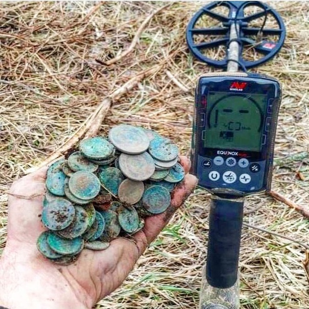 Какой металлоискатель лучше купить для поиска монет и золота: важные характеристики, цены, обзор моделей