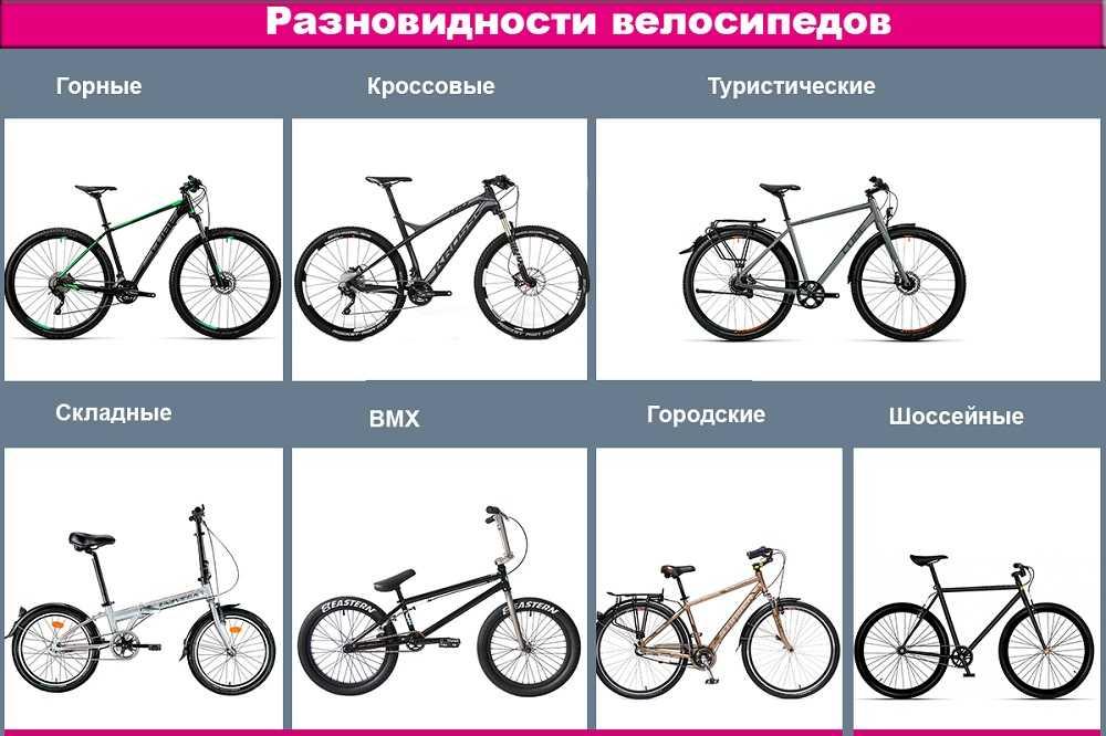 Как правильно выбрать велосипед: советы новичкам | выбор велосипеда | veloprofy.com
