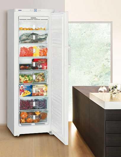 Как выбрать морозильную камеру для дома: описание и характеристики, отзывы потребителей о морозильных камерах