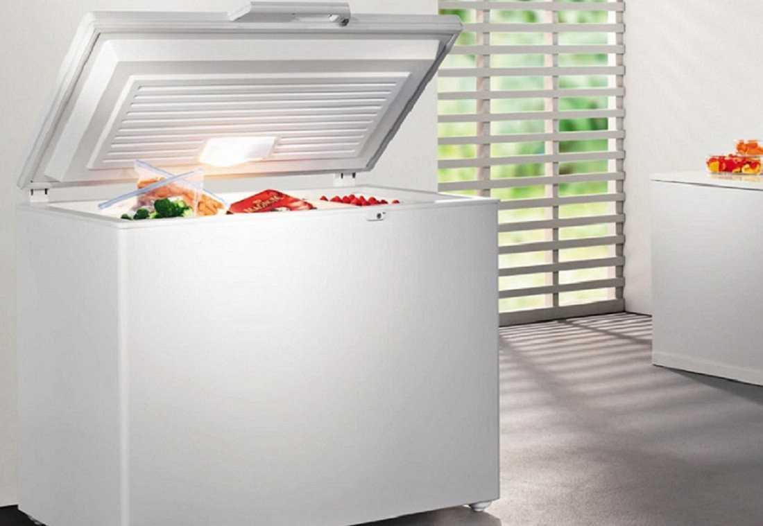 Лучшие морозильные камеры для дома: рейтинг 2021 года, отзывы, обзор цен