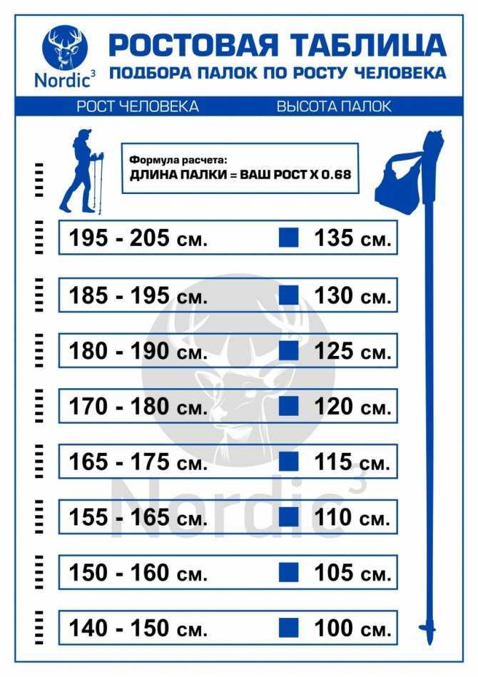 Палки для скандинавской ходьбы: как правильно выбрать, какие, размер, высота, отличие