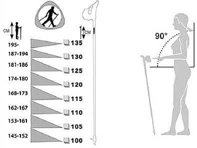 Палки для скандинавской ходьбы: таблица для правильного подбора