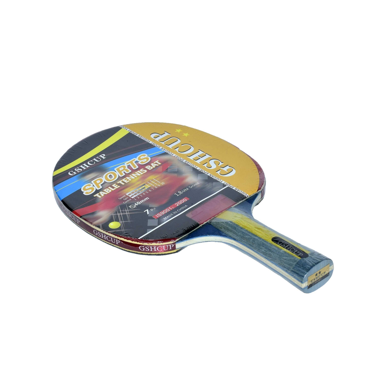 Как выбрать ракетку для настольного тенниса для профессиональной игры. 7 лучших ракеток для настольного тенниса