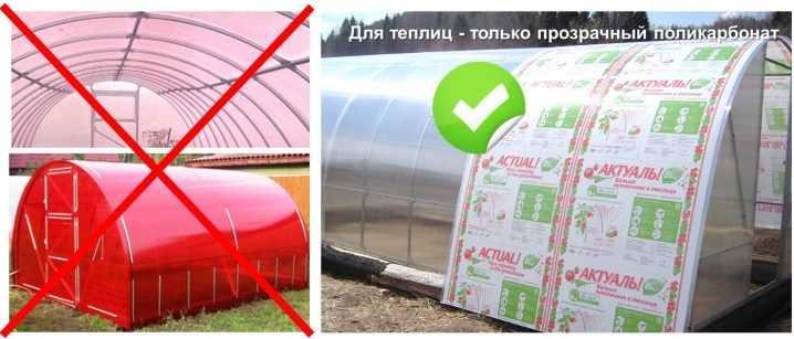 Как выбрать теплицу из поликарбоната: советы, отзывы, виды теплиц, рейтинг, достоинства и недостатки - sadovnikam.ru