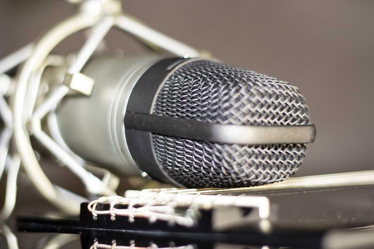 Какой микрофон выбрать: типы, характеристики, советы