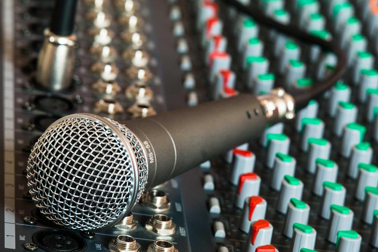 Особенности конденсаторного направленного микрофона – какой выбрать для записи