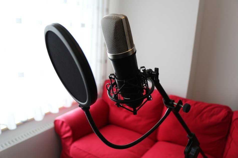 Микрофоны для записи голоса: хорошие модели для звукозаписи вокала и озвучки на компьютере. как выбрать микрофон для студии и для дома?