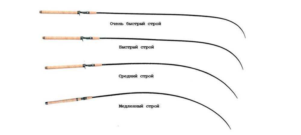 Спиннинг на щуку: как выбрать хорошую модель, особенности выбора теста спиннинга