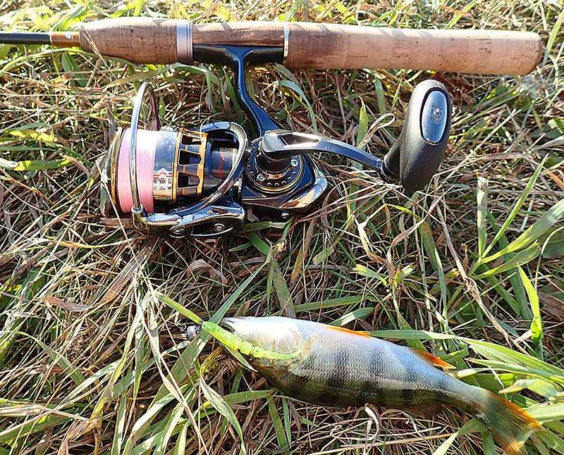 Купил спиннинг... а как же поймать рыбу? – начинающим рыболовам | рыбак bogdan
