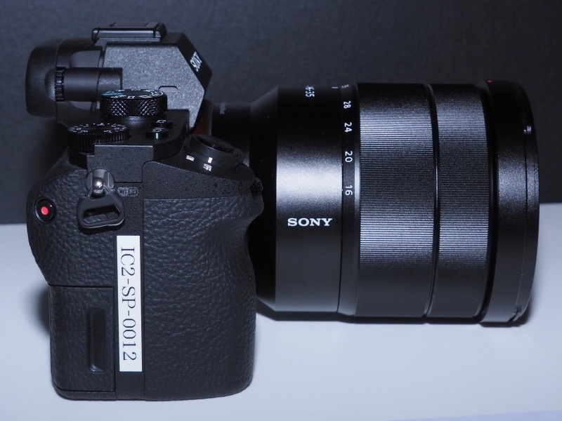 Sony ilce-7rm3: неделя с экспертом