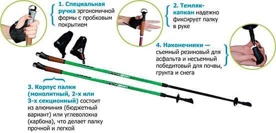 Как подобрать палки для скандинавской ходьбы. как выбрать палки для скандинавской ходьбы по росту: таблица. телескопические палки: плюсы и минусы.