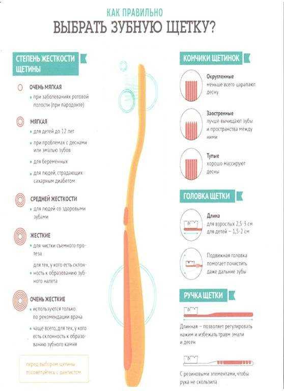 Как выбрать электрическую зубную щетку? подробный гайд по покупке и рейтинг 2020 года