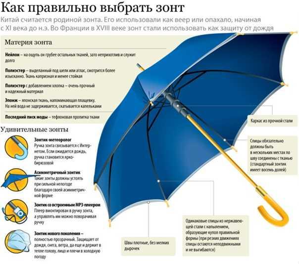 Как выбрать зонт? критерии выбора надёжного зонта. особенности