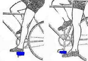 Как выбрать bmx велосипед? какой лучше? рейтинг 2019г.