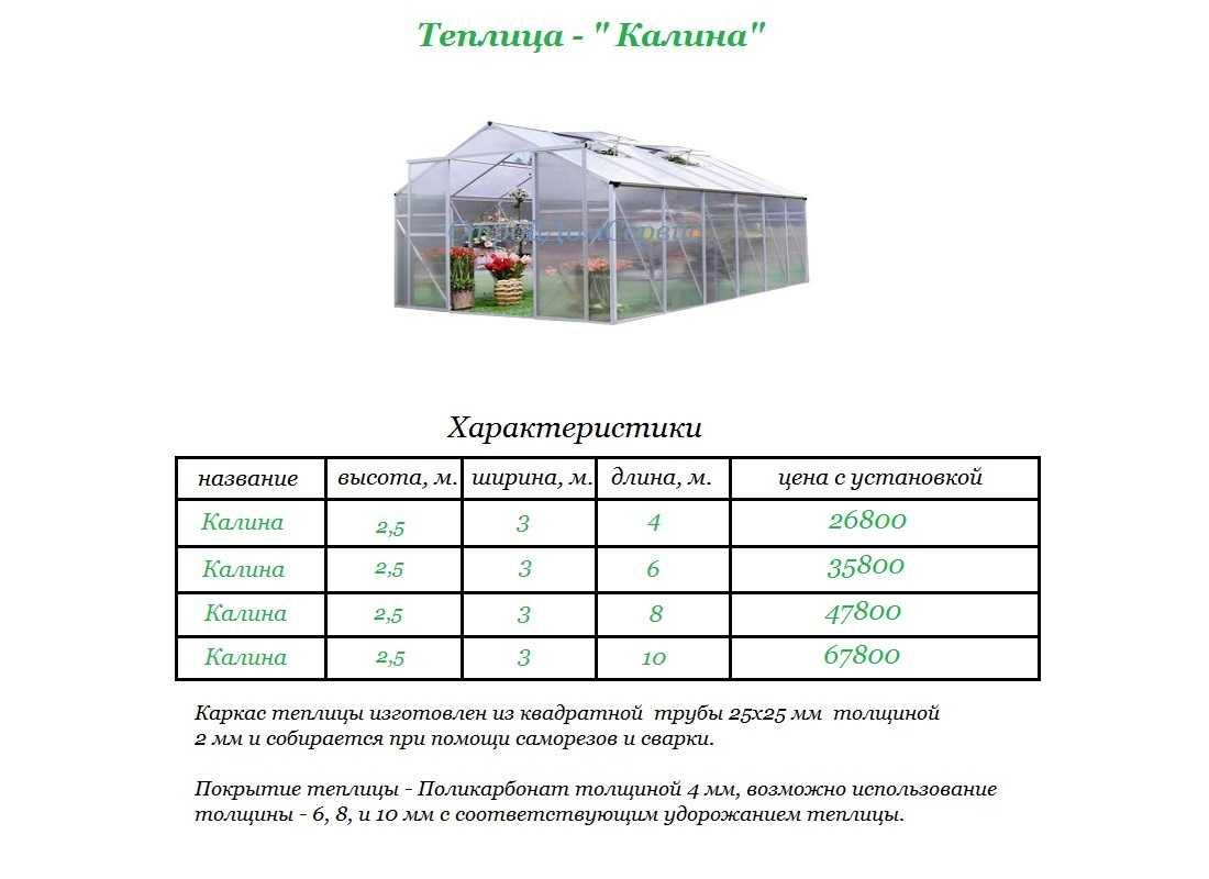 Как выбрать теплицу? как сделать это правильно, на что обращать внимание русский фермер