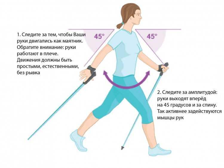 Топ-10 лучших палок для скандинавской ходьбы: подборка для каждого