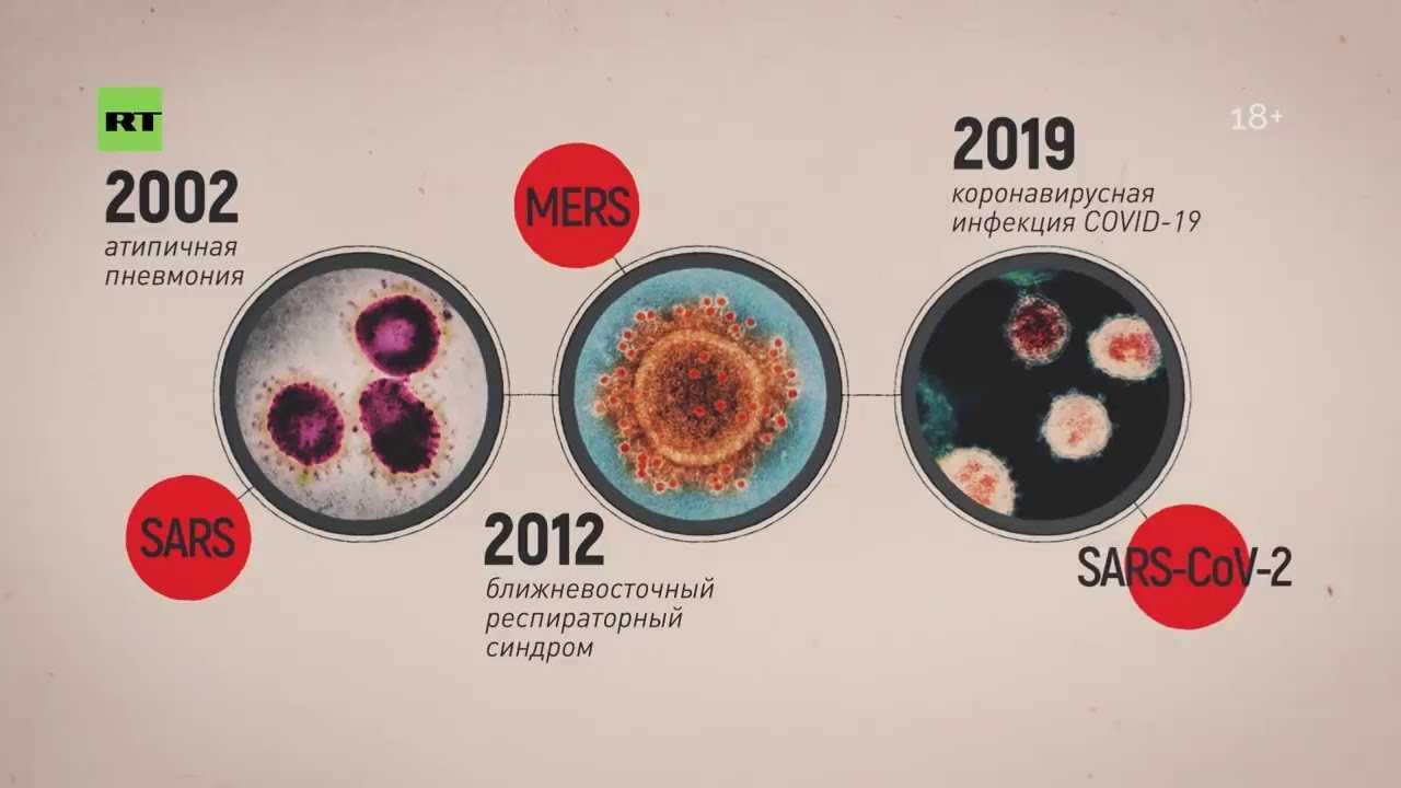 Правда о коронавирусе выходит на свет. учёные со всего мира разоблачают аферу с пандемией – новости руан