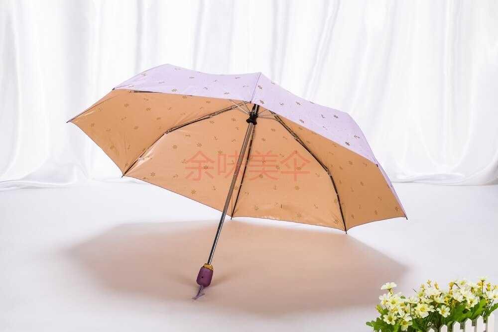 16 лучших зонтов - рейтинг 2020