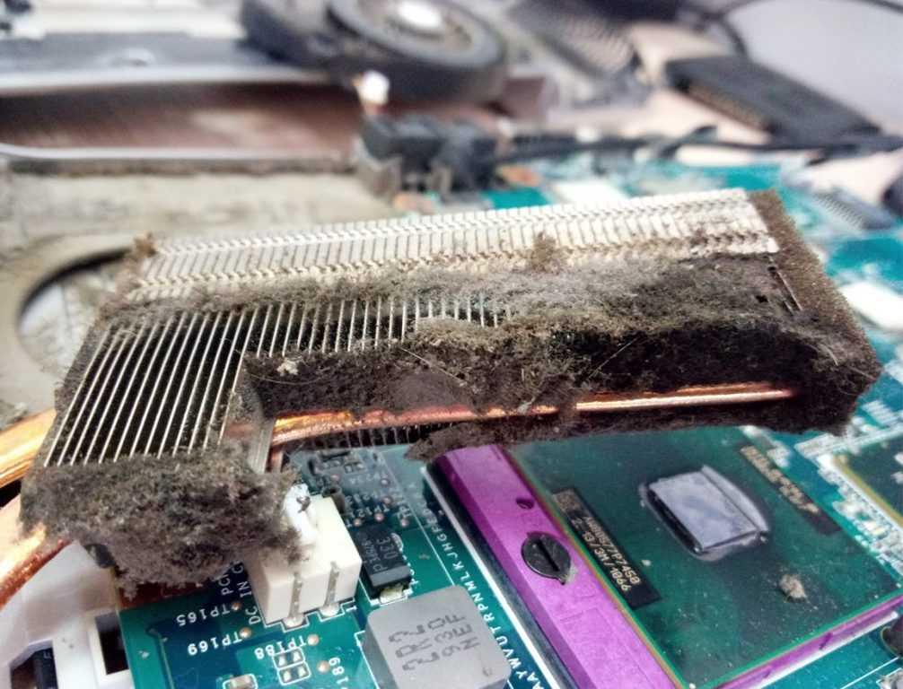 Как самостоятельно очистить ноутбук от пыли, чтобы не «тормозил».