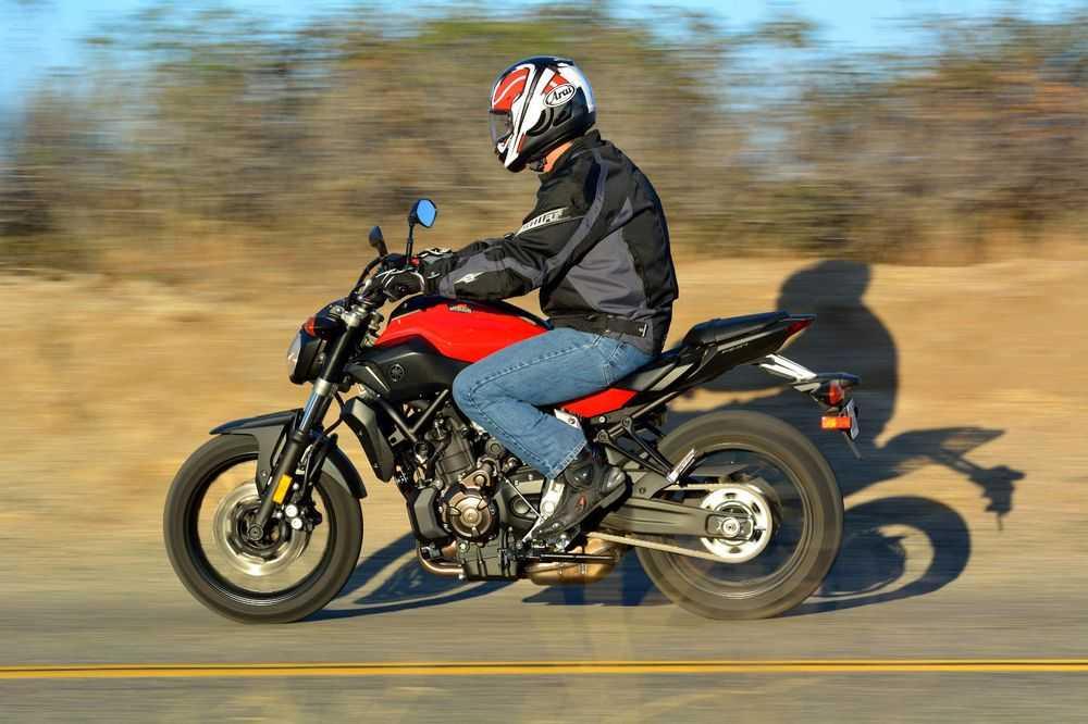 Какой выбрать мотоцикл для начинающих байкеров?