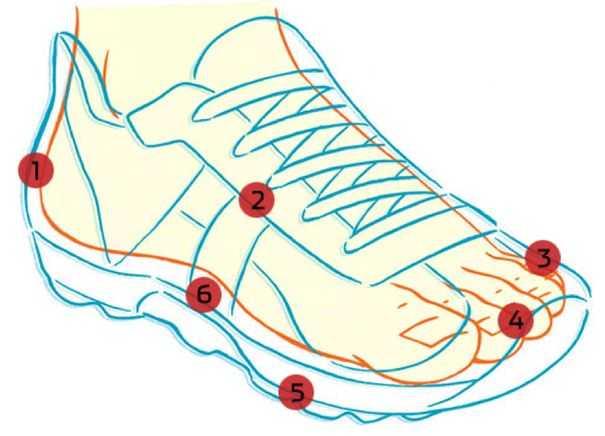 Как выбрать кроссовки для ходьбы? требования к качеству. чем они отличаются от беговых кроссовок? что нужно исследовать при покупке? бренды.