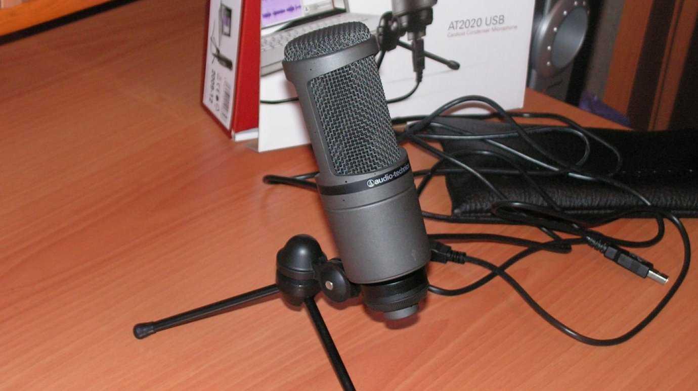 В статье представлены основные моменты на которые стоит обратить внимание в случае необходимости приобретения микрофона для записи голоса