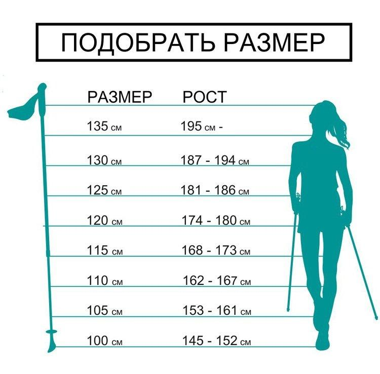 Как выбрать палки для скандинавской ходьбы (инструкция) + рейтинг лучших фирм