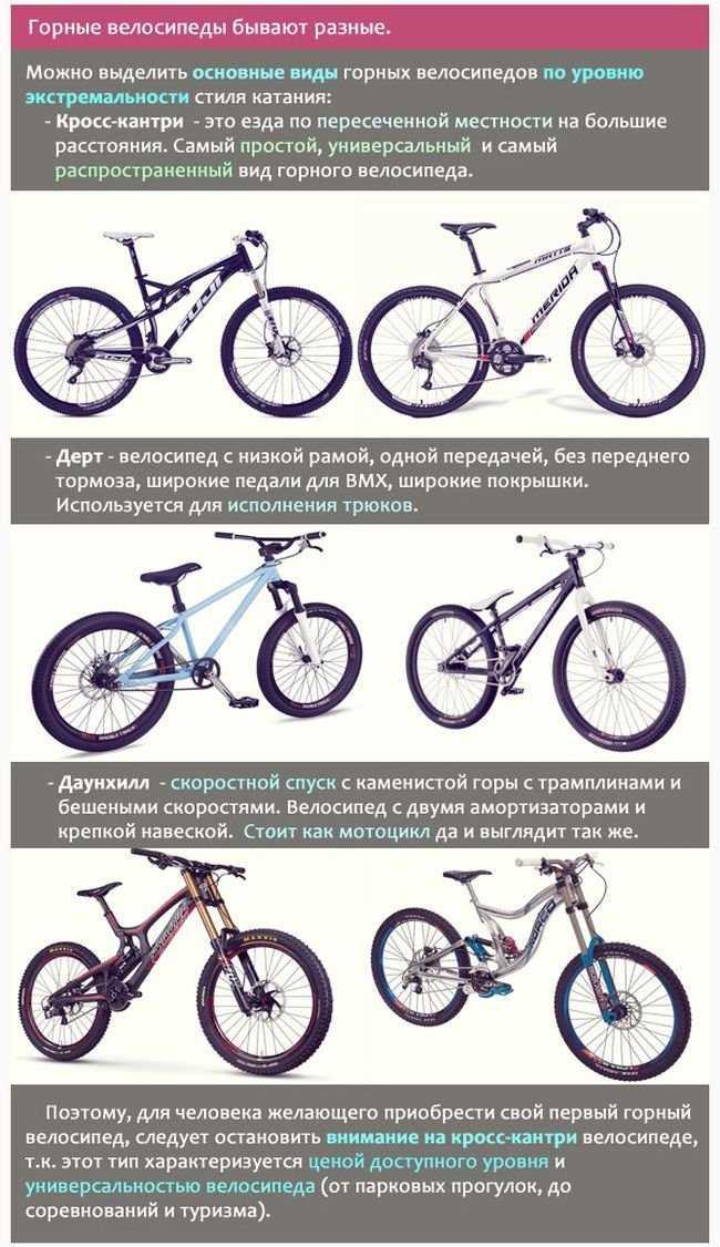 Как выбрать велосипед взрослому? топ-5 критериев выбора :: businessman.ru