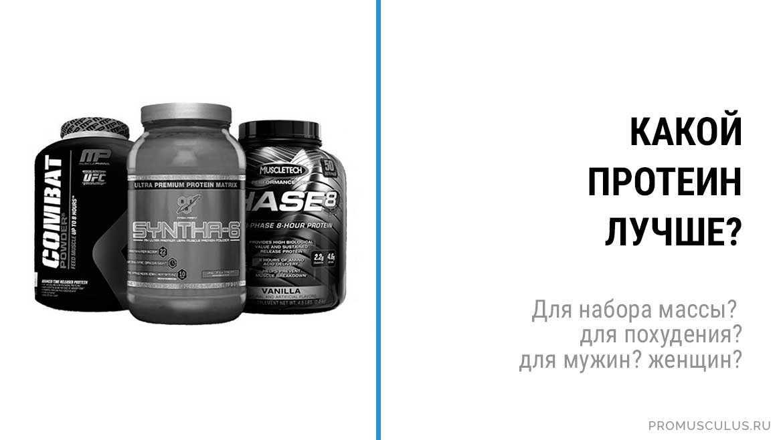 В статье вы сможете узнать как выбрать протеин который подойдет в целях сброса веса или же напротив - набора массы в вашем случае