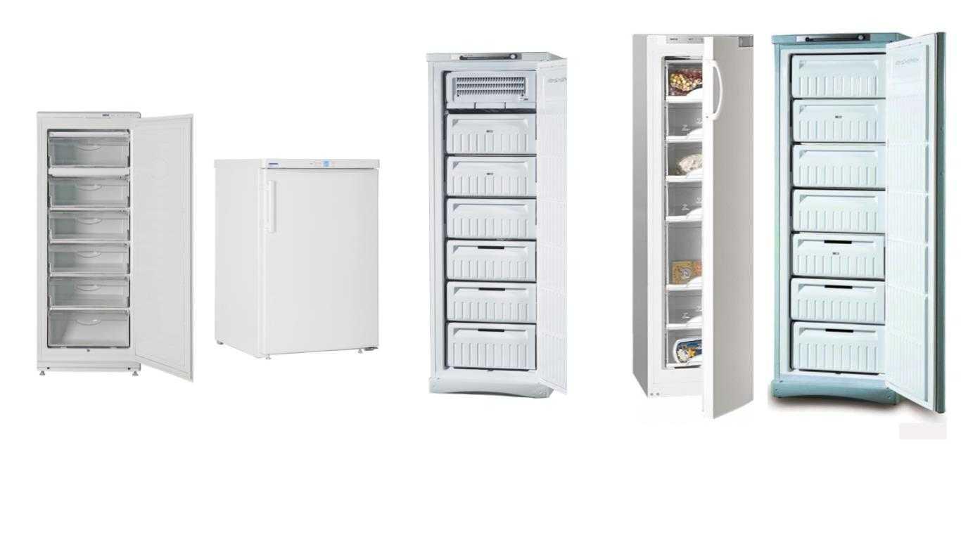 Холодильные камеры для дома: виды, критерии выбора, лучшие модели