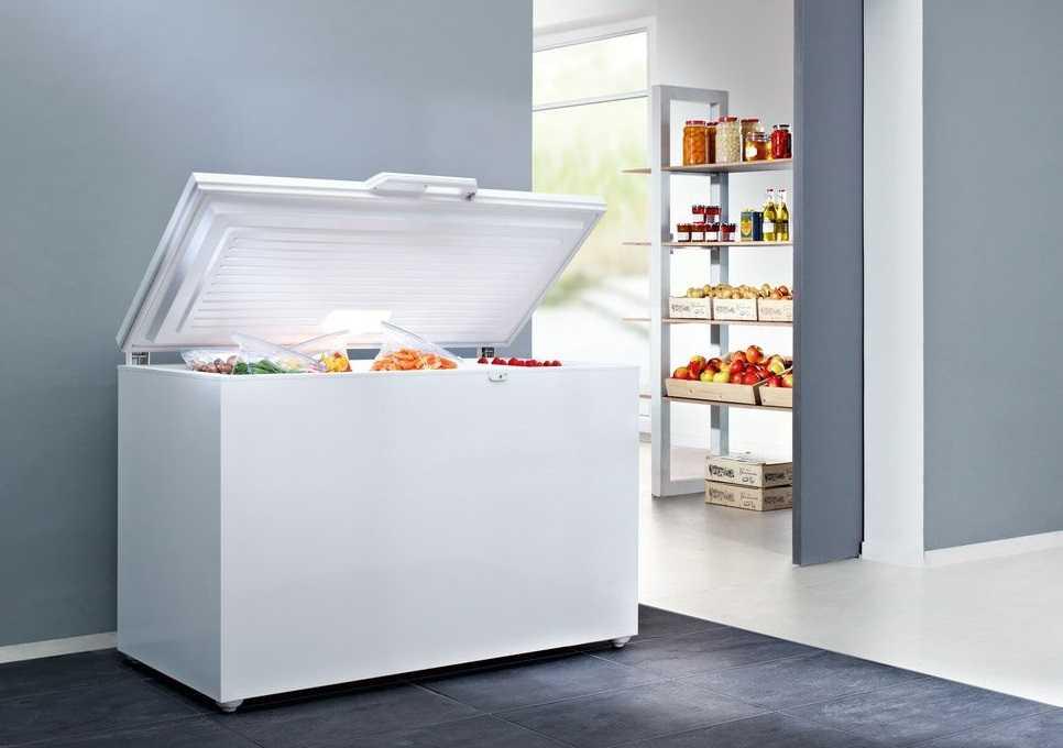 13 лучших морозильных камер - рейтинг 2020