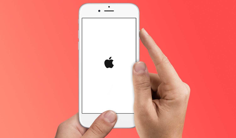 Apple опровергла новость, что перестанет продавать музыку в itunes. но дела плохи — wylsacom
