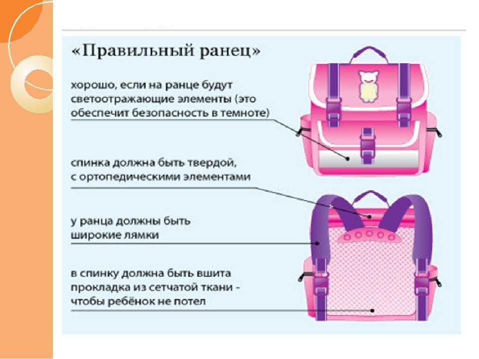 Ранец для первоклассника, разновидности рюкзаков, лучшие производители