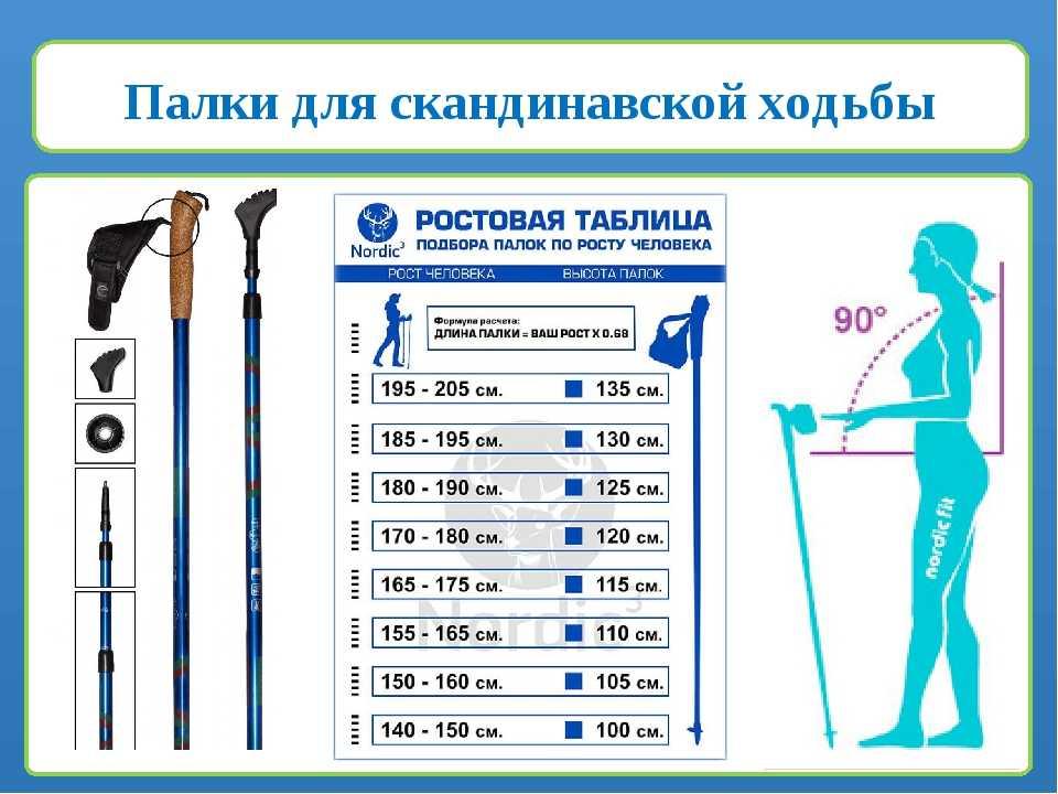Оцените в статье информацию о том как выбрать палки для скандинавской ходьбы Вы узнаете какие лучшие купить варианты для эффективности тренировок
