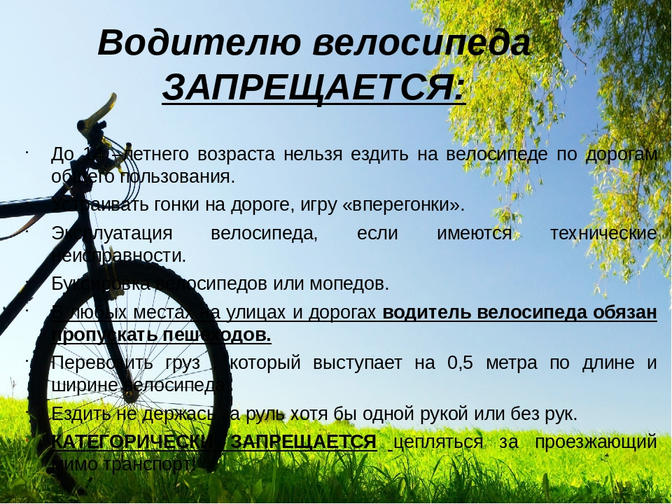 Как выбрать велосипед, советы по выбору велосипеда