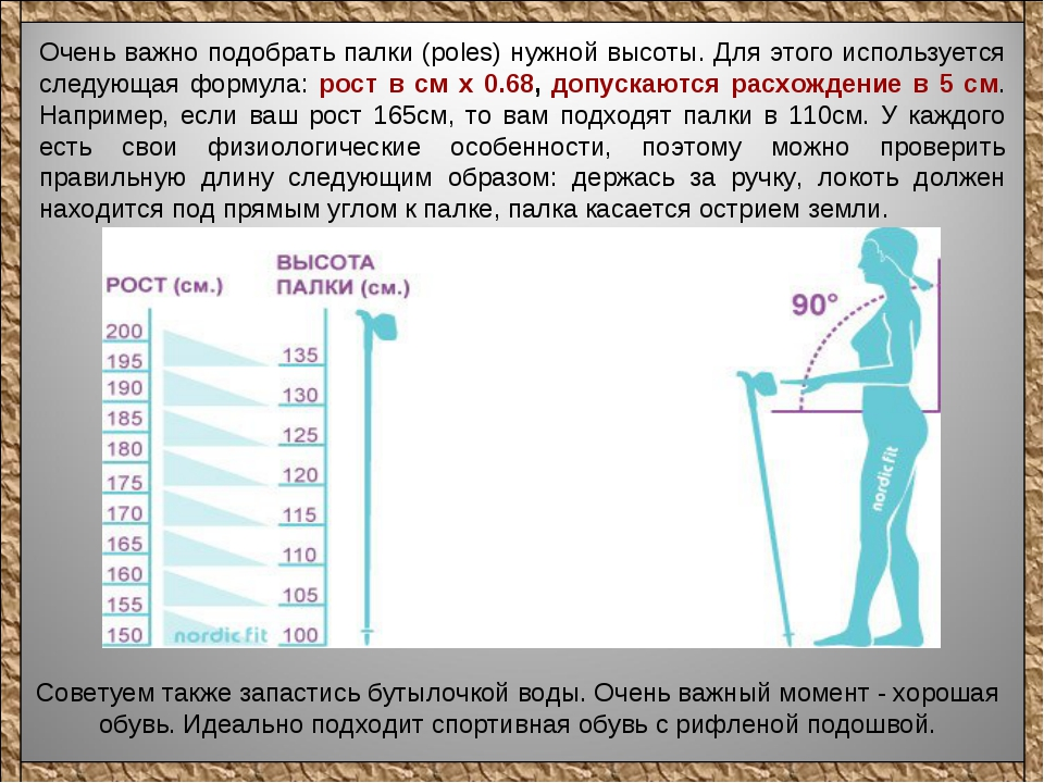 Как выбрать палки для скандинавской ходьбы правильно: таблица длины