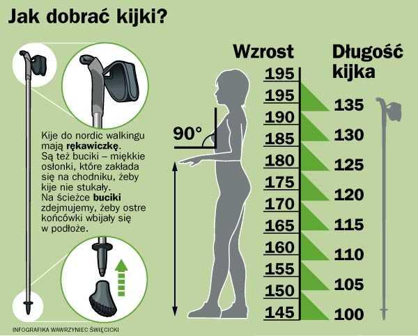 Как выбрать палки для скандинавской ходьбы: материал, таблица по росту