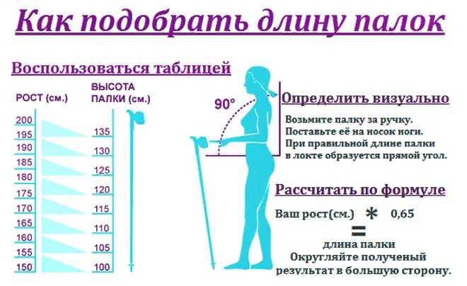 Как выбрать палки для скандинавской ходьбы – правила, размер, длина, высота, складные, телескопические, рейтинг, сколько стоят?