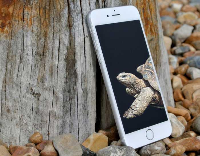 Apple готовит iphone и macbook, которые будут работать неделями от одной зарядки - cnews
