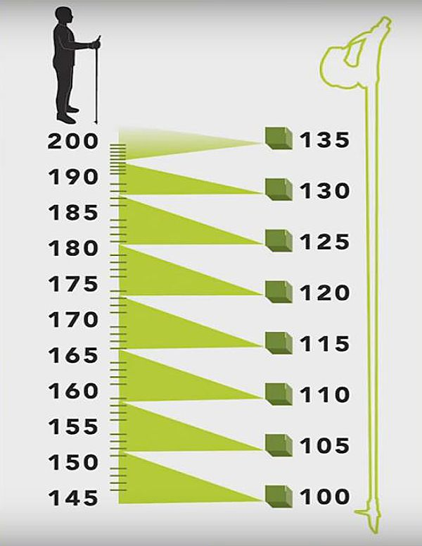 Палки для скандинавской ходьбы: цена и как выбрать по росту