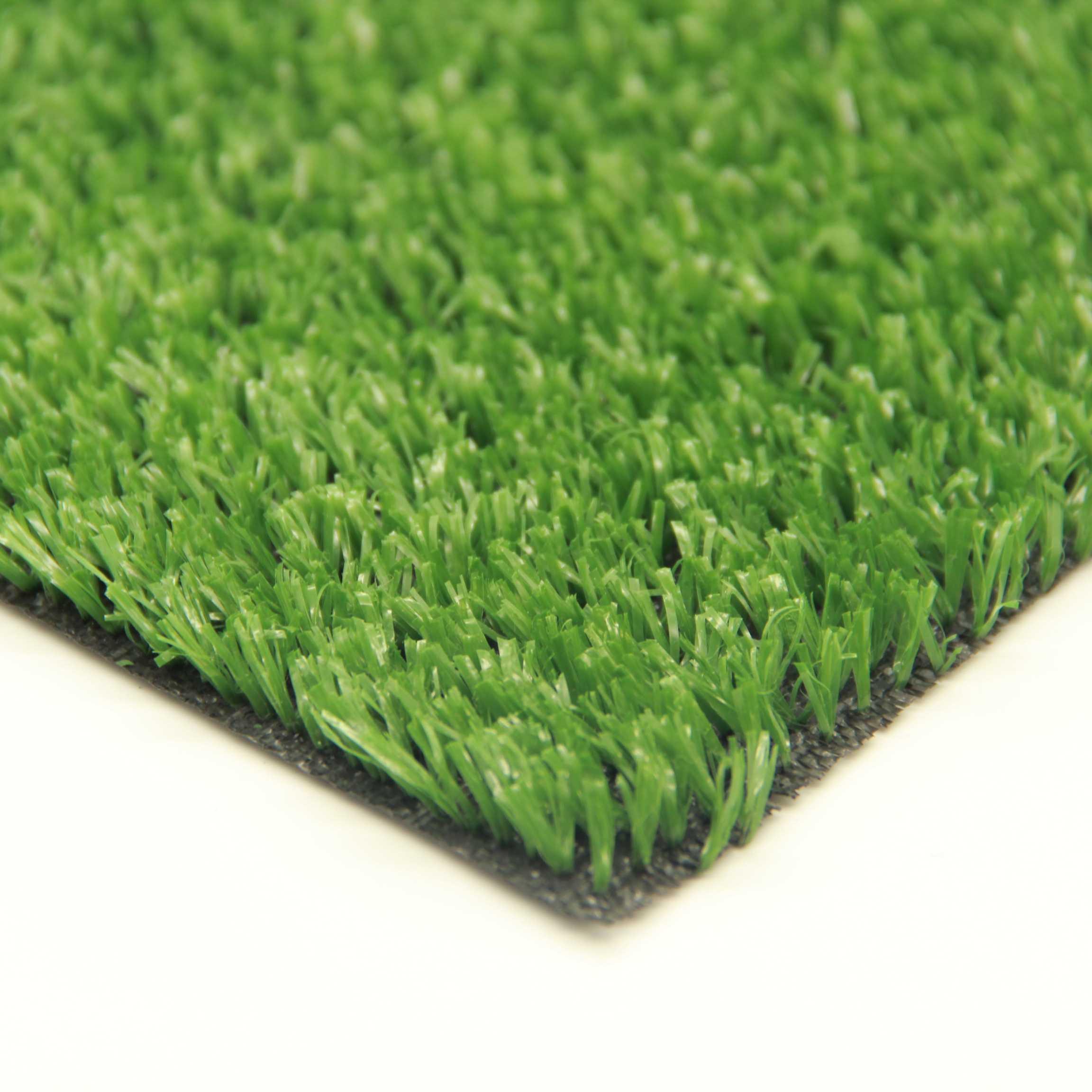 Газонная трава: какую смесь купить, многолетние, низкорослые и другие сорта