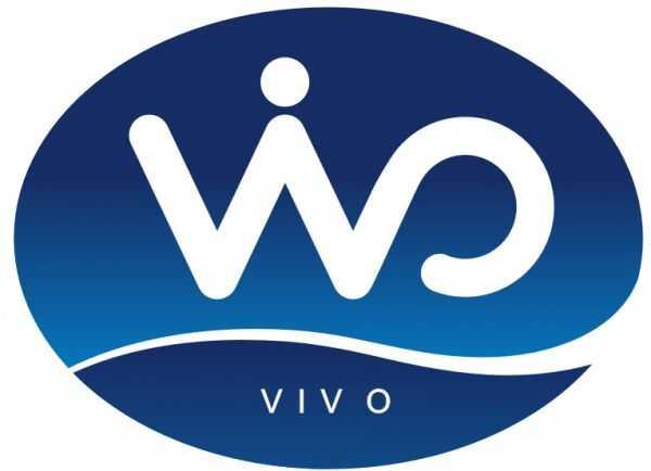Компания vivo — бренд, потеснивший huawei и xiaomi на китайском рынке