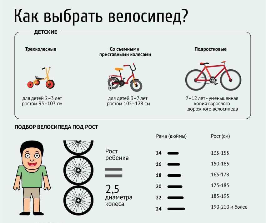 Какой тип велосипеда лучше выбрать для новичка