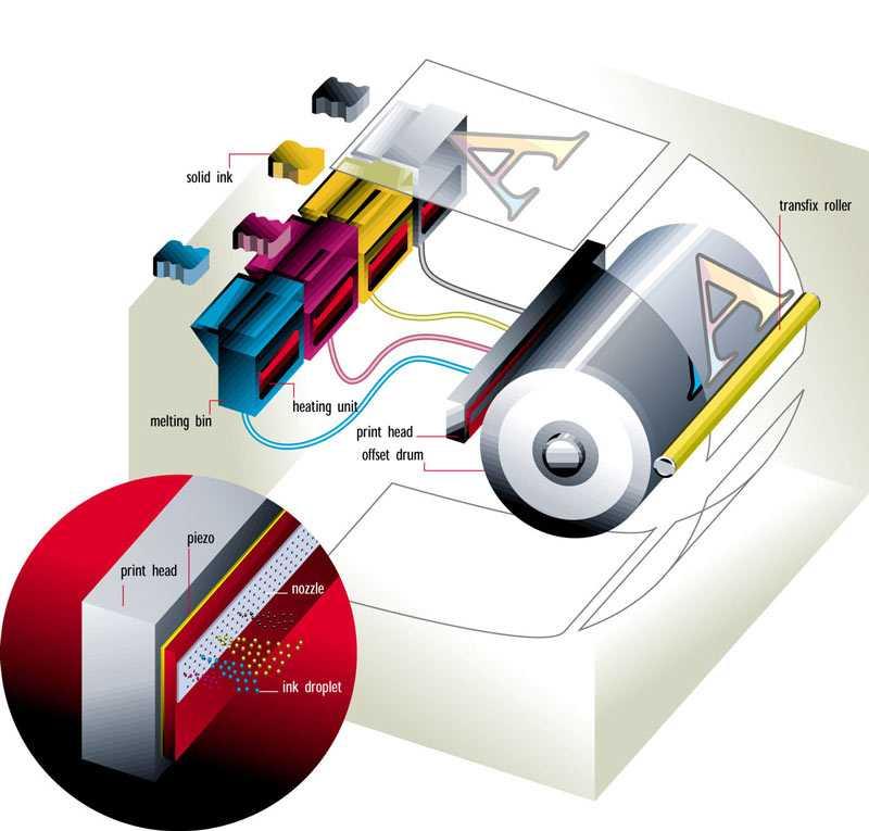 Как выбрать принтер для дома и работы