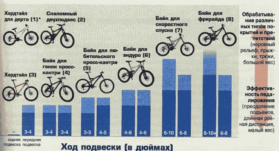 Какой велосипед лучше выбрать новичку